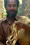 Handvoll Schlangen Stockfotografie