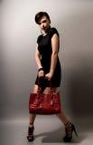 handväskakvinna Royaltyfri Fotografi