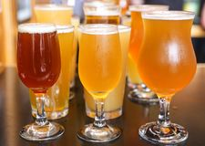 Handwerks-Bier-Probieren-Flug stockfotos