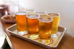 Handwerks-Bier-Probieren-Flug Stockbild