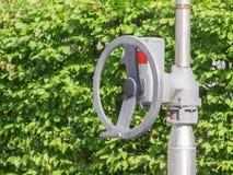Handwheel przed zielonymi liśćmi Obrazy Royalty Free