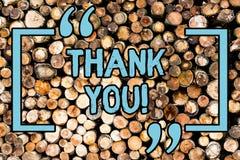 Handwriting tekst Dziękuje Ciebie Pojęcie znaczy grzecznego wyrażenie używać gdy uznający prezent usługi komplement Drewnianego zdjęcia royalty free
