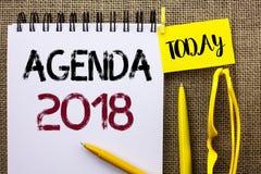 Handwriting teksta agenda 2018 Pojęcia znaczenia strategii rzeczy Planistycznego rozkładu Przyszłościowi cele Organizuję pisać na Obraz Royalty Free