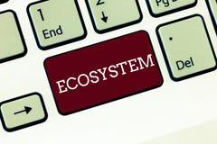 Handwriting teksta ekosystem Pojęcie znaczy biologicznej społeczności oddziałać wzajemnie organizmy i środowisko Klawiaturowego k zdjęcie royalty free