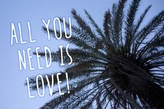 Handwriting text All You Need Is Love Motivational. Concept meaning Deep affection needs appreciation romance Tall palm tree blue. Sky ideas messages thoughts stock images