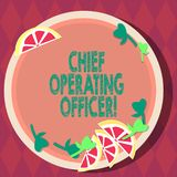 Handwriting text Chief Operating Officer. Concept meaning responsible for the daily operation of the company Cutouts of. Sliced Lime Wedge and Herb Leaves on vector illustration