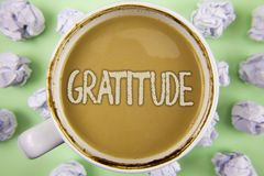 Handwriting text Gratitude. Concept meaning Quality of being thankful Appreciation Thankfulness Acknowledge written on Tea in Whit. Handwriting text Gratitude Stock Image