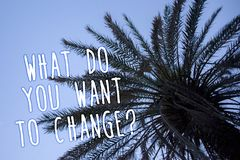 Handwriting text What Do You Want To Change Question. Concept meaning Strategy Planning Decision Objective Tall palm tree blue sky. Ideas messages thoughts royalty free stock photo