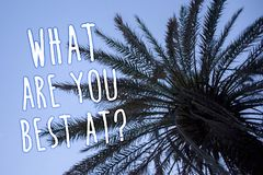 Handwriting text What Are You Best At Question. Concept meaning Individual creativity is a unique capability Tall palm tree blue s. Ky ideas messages thoughts royalty free stock photography