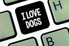 Handwriting text writing I Love Dogs. Concept meaning Have good feelings towards canines To like pets animals.  royalty free stock photo