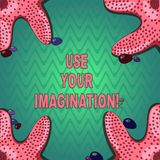 Handwriting text writing Use Your Imagination. Concept meaning using ability to form mental pictures of ideas Starfish vector illustration