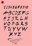Handwritten calligraphic vector alphabet. Stock Images