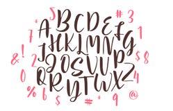 Handwritten calligraphy font. Vector alphabet. Hand drawn letters Stock Photos
