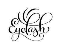 Handwritten calligraphy lettering word Eyelash. vector illustration on white background.  Royalty Free Stock Images