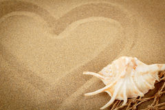 Handwritten heart on sand with seashell and shallow focus Stock Image