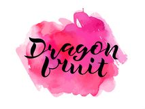 Handwritten lettering Dragon fruit on watercolor stock photo