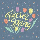 Handwritten lettering. Forever Spring. Motivational handwritten lettering. Romantic design element that can be used on a T-shirt, postcard, poster, invitation Royalty Free Stock Photo