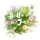 Handwritten lettering Hello June isolated on watercolor painting imitation background. Lettering for Warm Season card, art shop, logo, badge, postcard, poster stock illustration