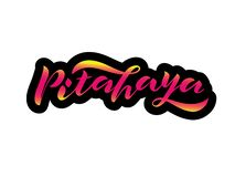 Handwritten lettering Pitahaya with pink gradient and black contour royalty free illustration