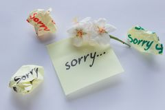 Handwritten note - I`m Sorry. Small delicate white flowers of al. Monds royalty free stock photography