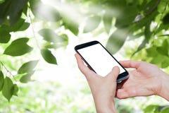 Handy in der Hand einer Frau Moderne Technologien holen Freude herein Lizenzfreies Stockfoto