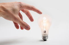 Handy idea bulb Royalty Free Stock Images