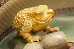 Handycraft of  golden toad Royalty Free Stock Photo