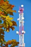 Handykommunikationsradio-Fernsehturm, Mast, Zellmikrowellenantennen und Übermittler gegen den blauen Himmel und die Bäume Lizenzfreie Stockfotografie