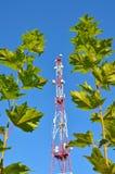 Handykommunikationsradio-Fernsehturm, Mast, Zellmikrowellenantennen und Übermittler gegen den blauen Himmel und die Bäume Stockfotos