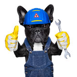 Handyman  dog Royalty Free Stock Photos
