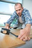 Handyman installing new layered wooden parquet. Fitting stock images