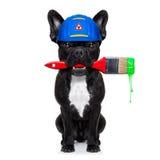 Handyman painter   dog Royalty Free Stock Photo