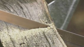 Handyman saw oak logs by hand. Man using an easel and a wood saw to cut logs stock video