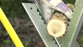 Handyman saw oak logs by hand. Man using an easel and a wood saw to cut logs, closeup stock video