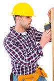 Handyman using measure tape on wooden plank Stock Image