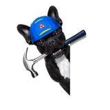 Handyman  wrench  dog Stock Image