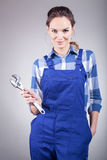 Handywoman with pillers Stock Photos
