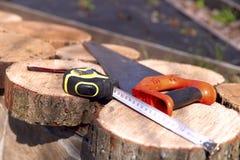 Handzaag en het meten van band op rond spilah van de boom royalty-vrije stock foto
