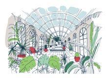 Handzeichen des Innenraums des Gewächshauses voll von tropischen Anlagen Bunte Zeichnung des Glashauses mit Palmen, exotisch stock abbildung