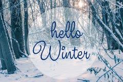 Handzeichnende hallo-Winteraufschrift Winterurlaub compositio lizenzfreies stockbild
