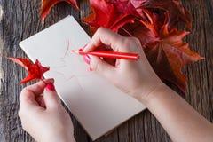 Handzeichnung mit Stift und Notizbuch Lizenzfreie Stockfotos