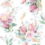 Handzeichnungs-Aquarell-Blumenmuster mit Protearose, -blättern, -niederlassungen und -blumen Böhmisches nahtloses Goldrosa vektor abbildung