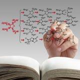 Handzeichnungs-Molekülstruktur Stockbilder