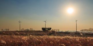 Haneul公园冬天风景  免版税库存图片
