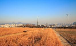 Haneul公园冬天风景  免版税库存照片