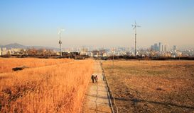 Haneul公园冬天风景  库存照片