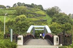 Haneul公园在夏天在汉城,韩国 免版税库存图片