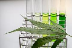 Hanf mischt, Analyse des Hanfs im Labor Drogen bei lizenzfreie stockfotografie