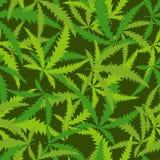 Hanf treibt nahtloses Muster Blätter Vektorhintergrund narkotischen p Lizenzfreie Stockfotografie