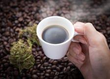 Hanfkaffee Lizenzfreie Stockfotos